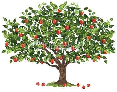 albero-di-mele