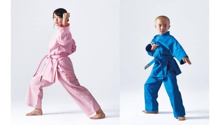 Karategi a colori