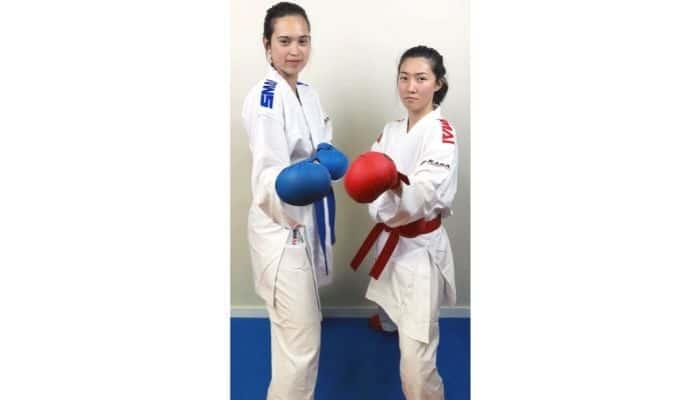 Karategi Kumite (Aka e Ao)
