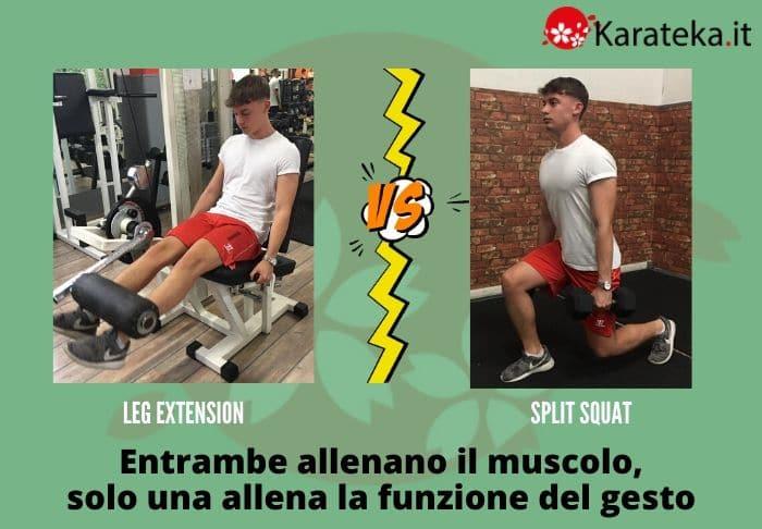 leg-extension-vs-split-squat
