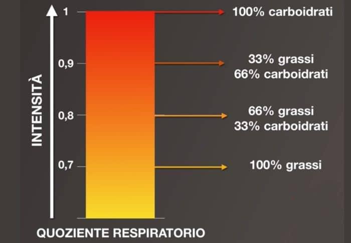 quoziente-respiratorio