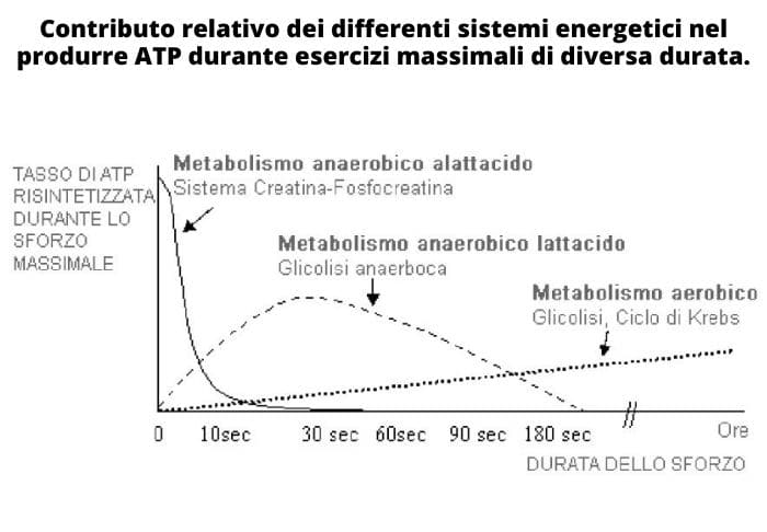 contributo-sistemi-energetici