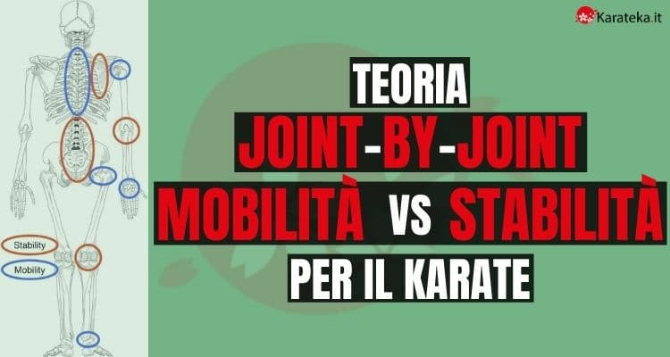 joint-by-joint-mobilità-vs-stabilità-per-il-karate