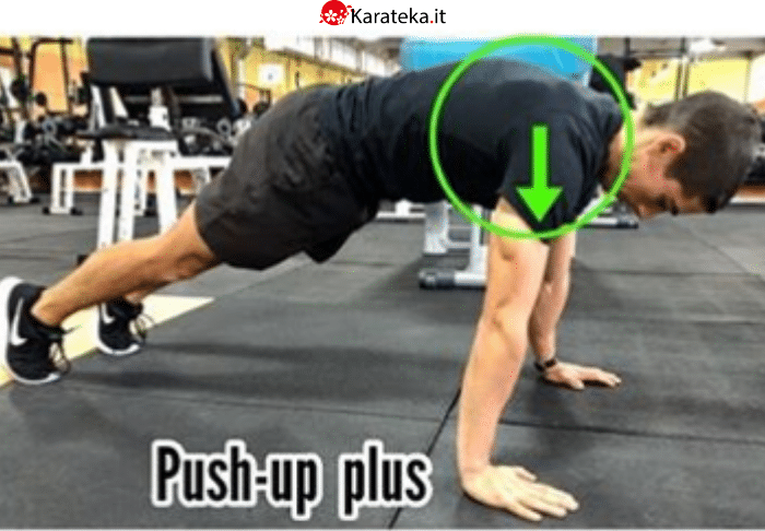 push-up-plus-gran-dentato-anteriore
