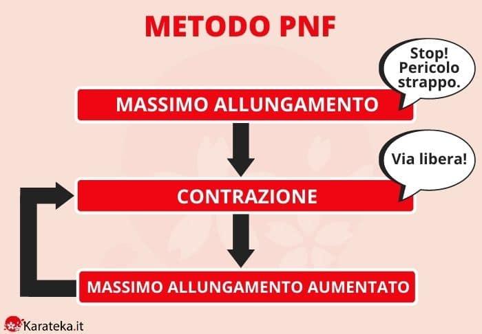 allungamento-metodo-PNF