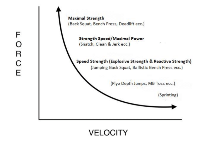 esercizi-curva-hill-forza-velocità